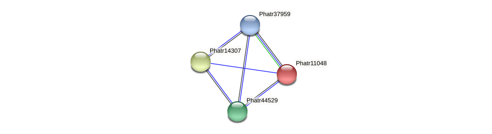 Phatr11048 protein (Phaeodactylum tricornutum) - STRING interaction network