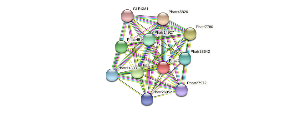 Phatr11154 protein (Phaeodactylum tricornutum) - STRING interaction network