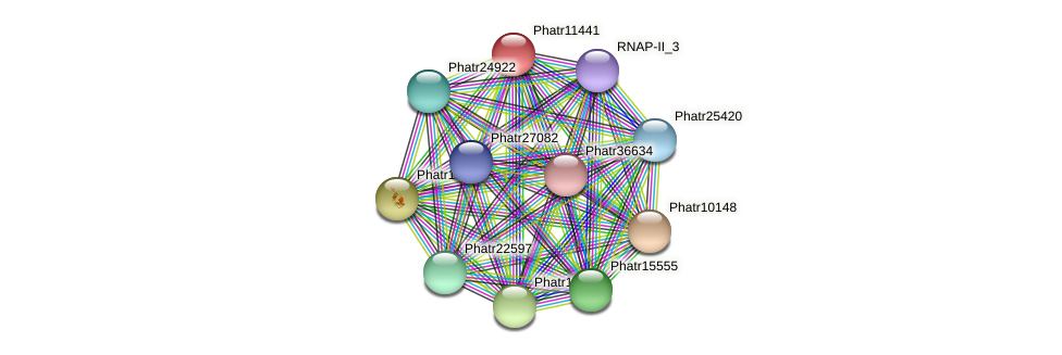 Phatr11441 protein (Phaeodactylum tricornutum) - STRING interaction network