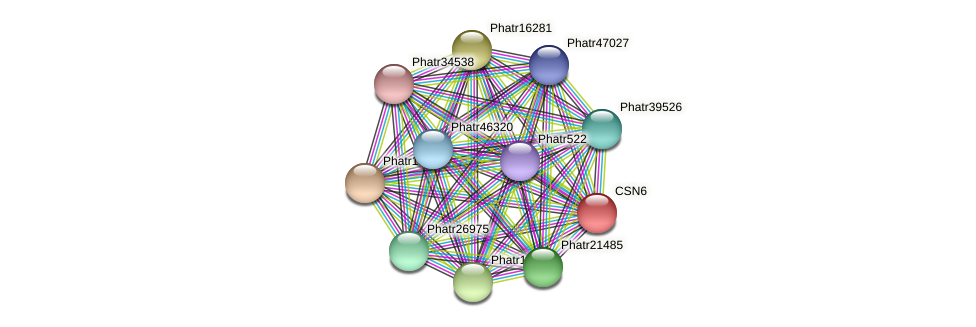 CSN6 protein (Phaeodactylum tricornutum) - STRING interaction network