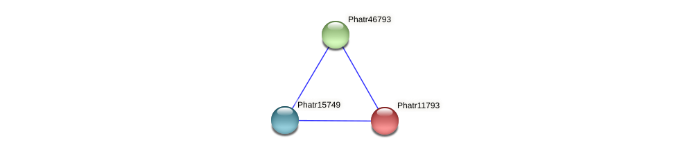 Phatr11793 protein (Phaeodactylum tricornutum) - STRING interaction network