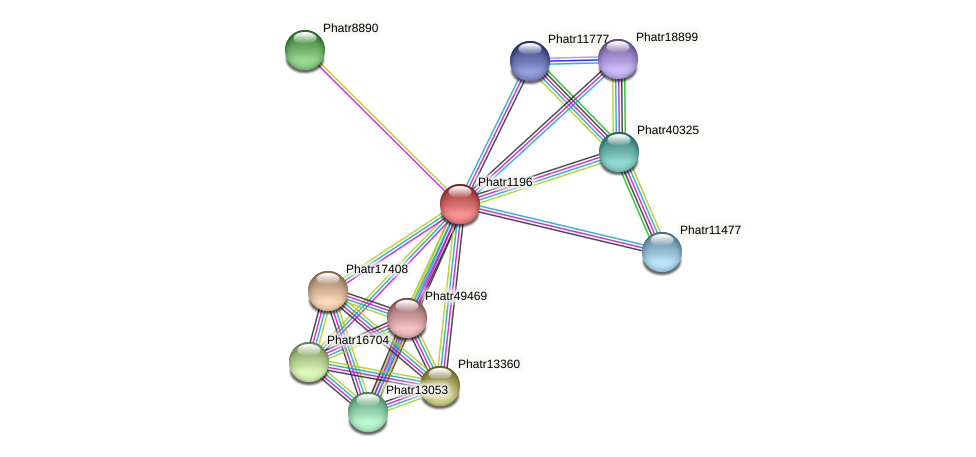 Phatr1196 protein (Phaeodactylum tricornutum) - STRING interaction network