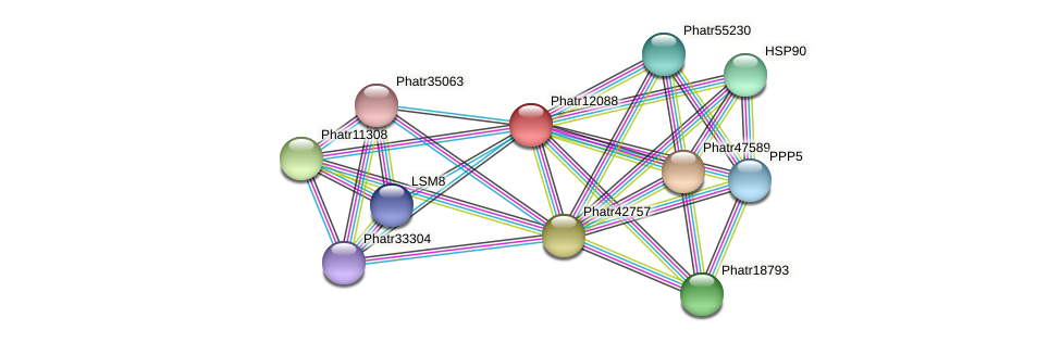 Phatr12088 protein (Phaeodactylum tricornutum) - STRING interaction network