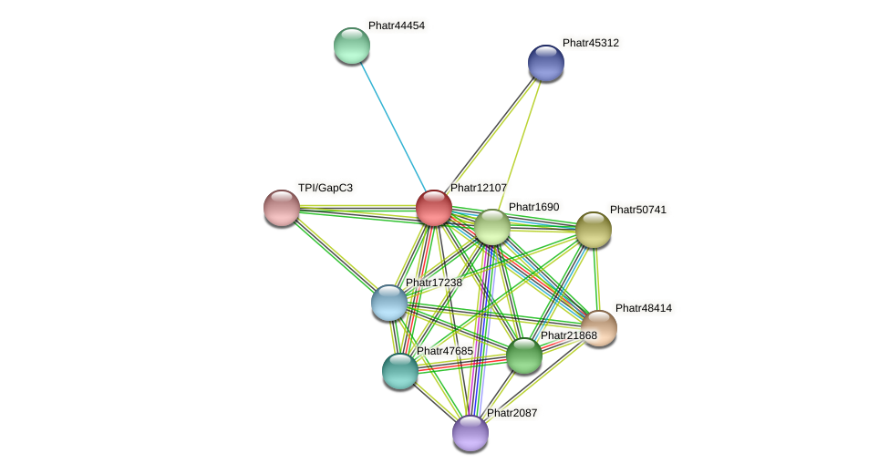 Phatr12107 protein (Phaeodactylum tricornutum) - STRING interaction network