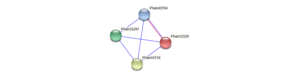Phatr12155 protein (Phaeodactylum tricornutum) - STRING interaction network