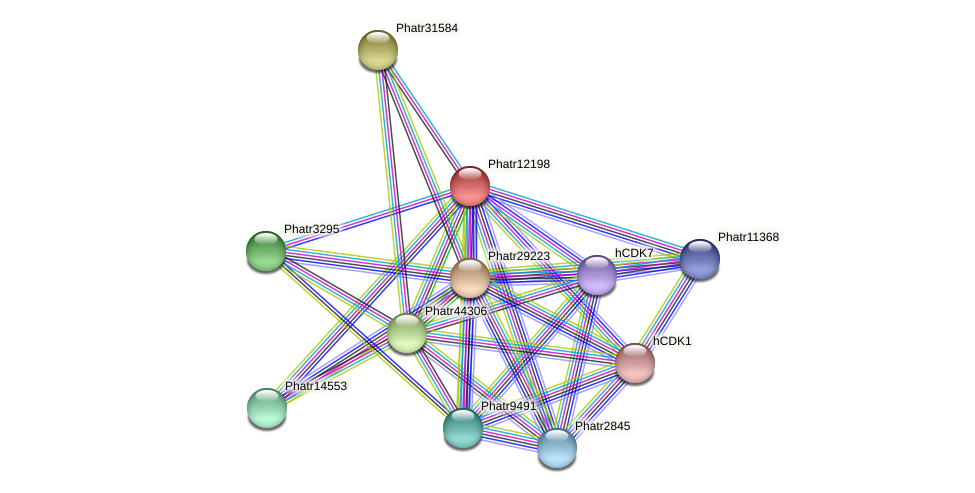 Phatr12198 protein (Phaeodactylum tricornutum) - STRING interaction network