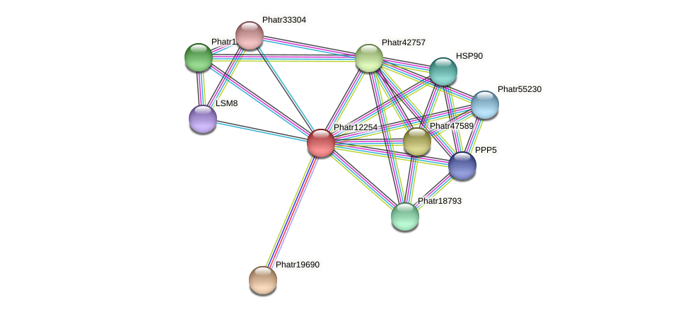 Phatr12254 protein (Phaeodactylum tricornutum) - STRING interaction network