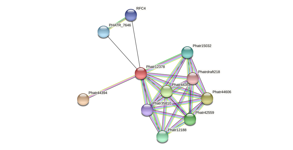 Phatr12378 protein (Phaeodactylum tricornutum) - STRING interaction network