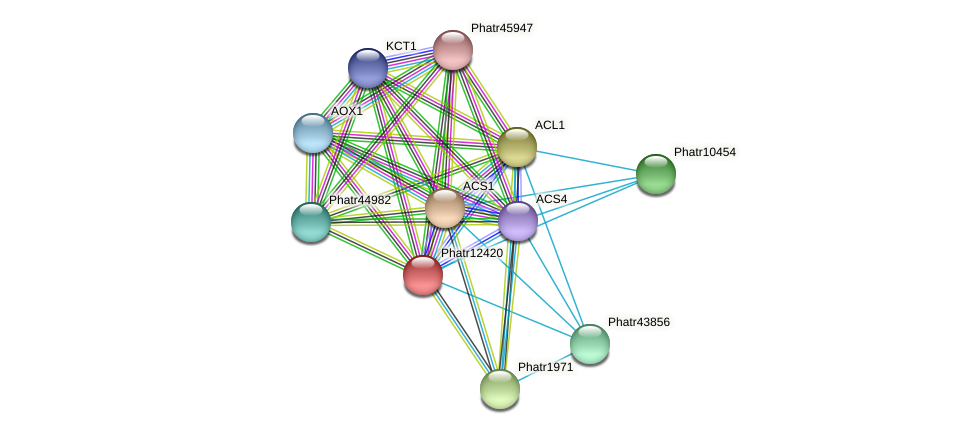 Phatr12420 protein (Phaeodactylum tricornutum) - STRING interaction network