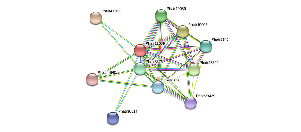 Phatr12589 protein (Phaeodactylum tricornutum) - STRING interaction network