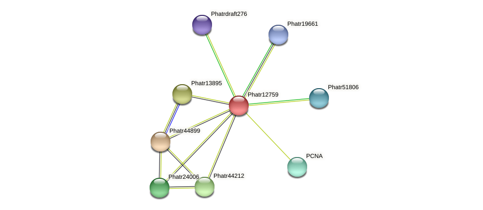 Phatr12759 protein (Phaeodactylum tricornutum) - STRING interaction network