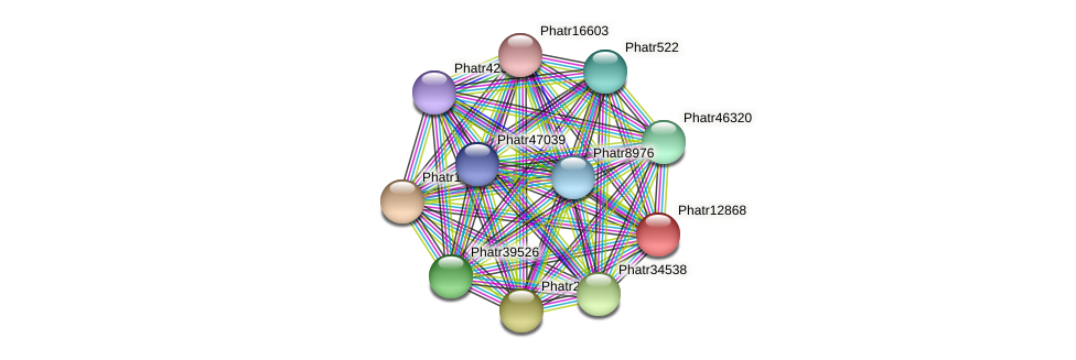 Phatr12868 protein (Phaeodactylum tricornutum) - STRING interaction network