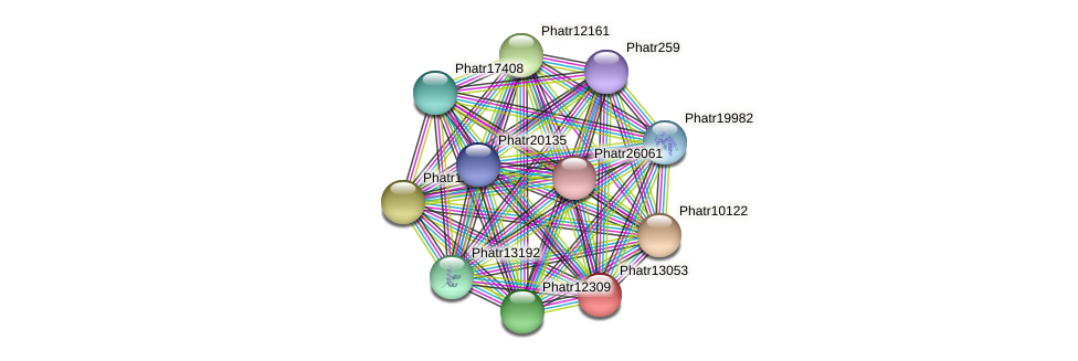 Phatr13053 protein (Phaeodactylum tricornutum) - STRING interaction network