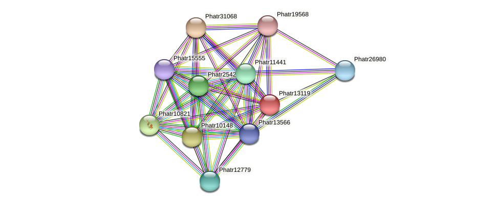 Phatr13119 protein (Phaeodactylum tricornutum) - STRING interaction network