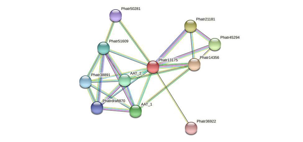Phatr13175 protein (Phaeodactylum tricornutum) - STRING interaction network