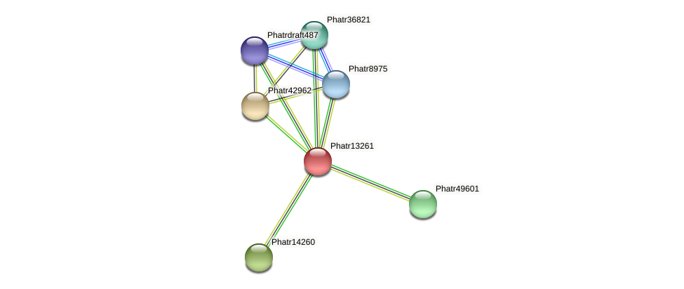 Phatr13261 protein (Phaeodactylum tricornutum) - STRING interaction network