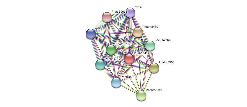 Phatr13417 protein (Phaeodactylum tricornutum) - STRING interaction network