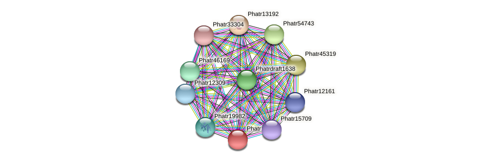Phatr13526 protein (Phaeodactylum tricornutum) - STRING interaction network
