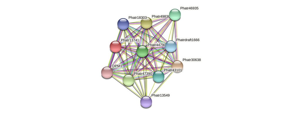 Phatr13741 protein (Phaeodactylum tricornutum) - STRING interaction network