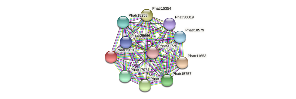 Phatr13820 protein (Phaeodactylum tricornutum) - STRING interaction network