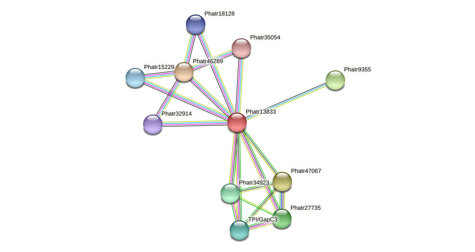 Phatr13833 protein (Phaeodactylum tricornutum) - STRING interaction network