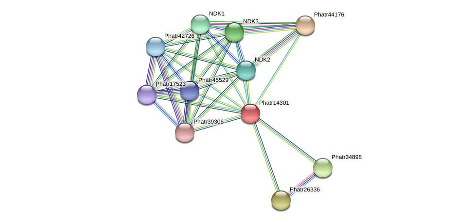 Phatr14301 protein (Phaeodactylum tricornutum) - STRING interaction network