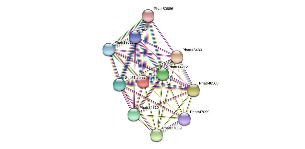 Phatr14412 protein (Phaeodactylum tricornutum) - STRING interaction network