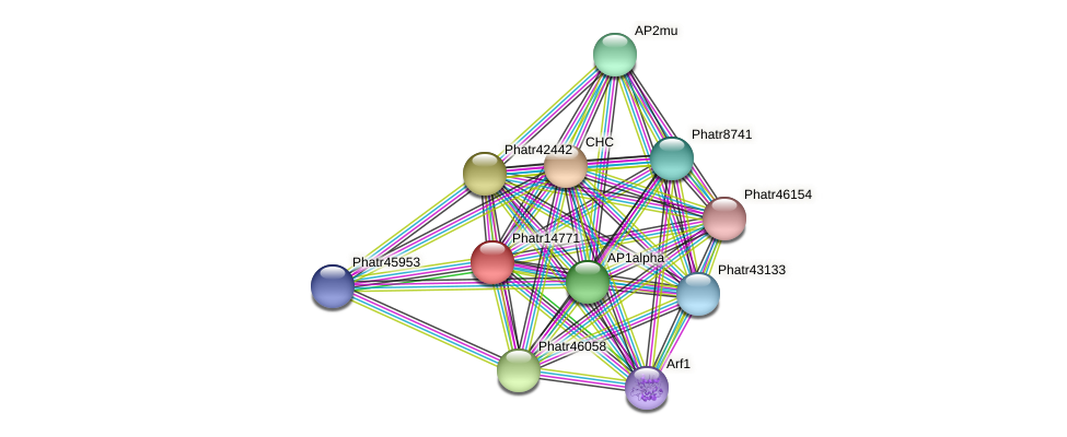 Phatr14771 protein (Phaeodactylum tricornutum) - STRING interaction network