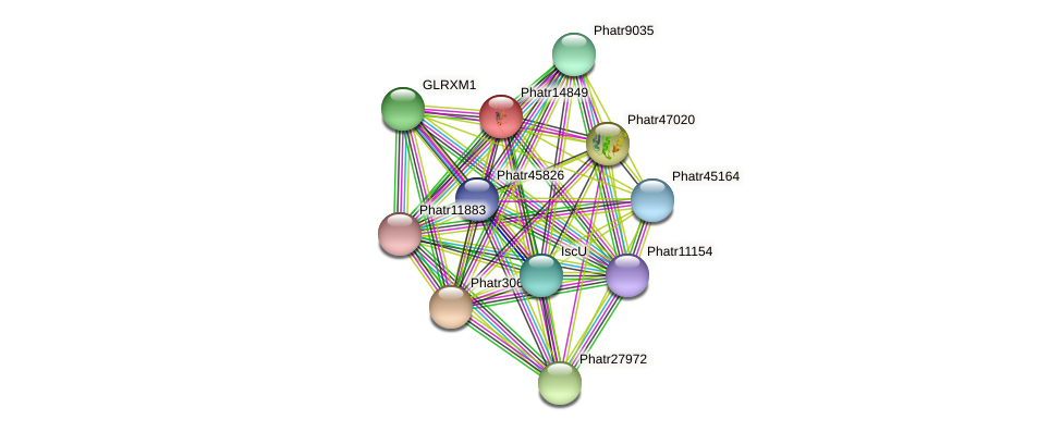 Phatr14849 protein (Phaeodactylum tricornutum) - STRING interaction network