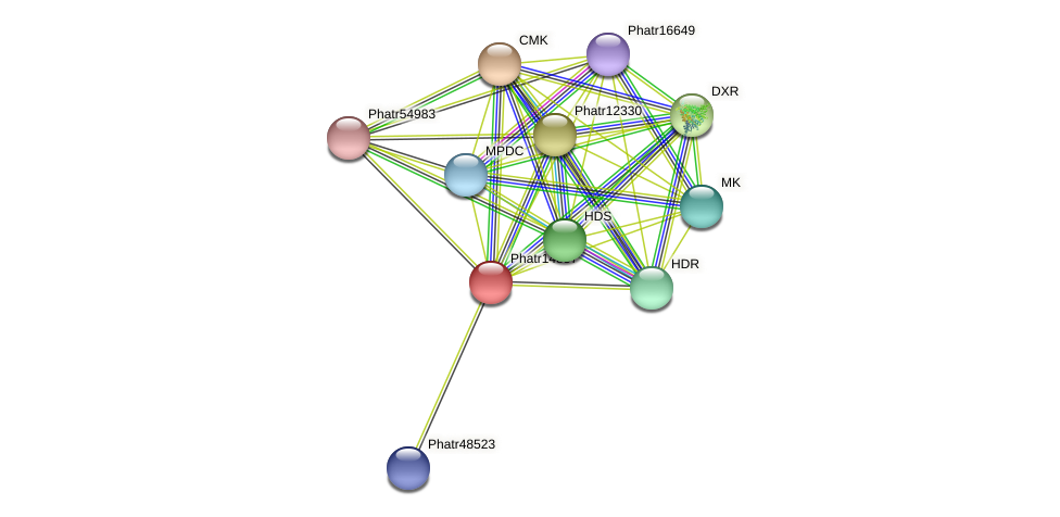 Phatr14857 protein (Phaeodactylum tricornutum) - STRING interaction network