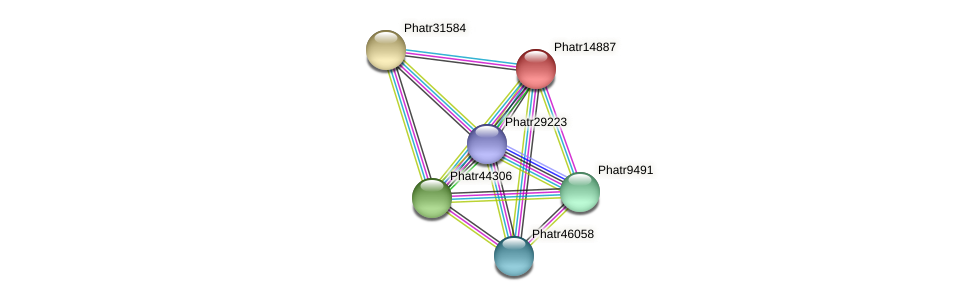 Phatr14887 protein (Phaeodactylum tricornutum) - STRING interaction network