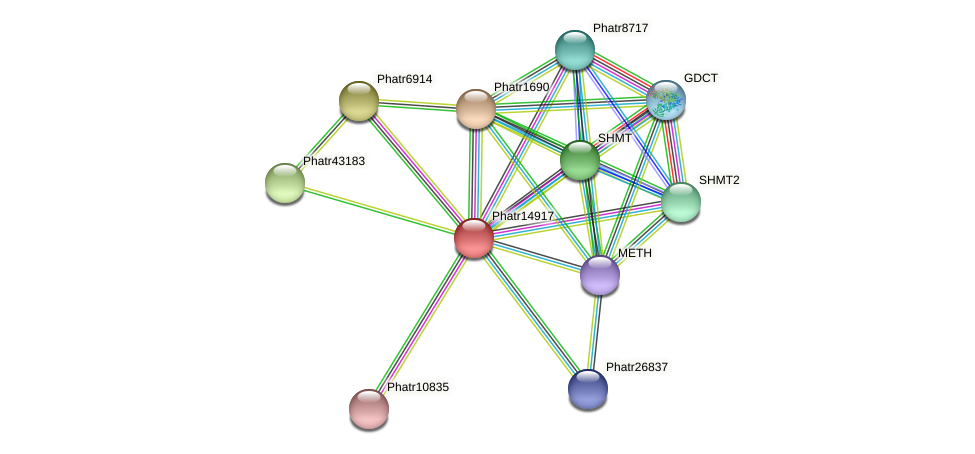 Phatr14917 protein (Phaeodactylum tricornutum) - STRING interaction network