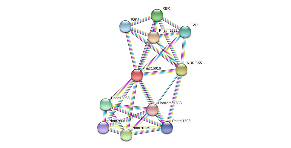 Phatr15016 protein (Phaeodactylum tricornutum) - STRING interaction network