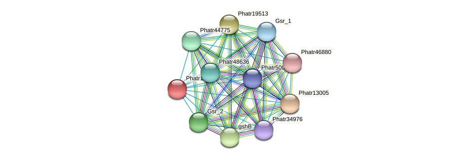 Phatr15214 protein (Phaeodactylum tricornutum) - STRING interaction network