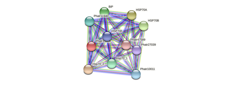 Phatr15224 protein (Phaeodactylum tricornutum) - STRING interaction network