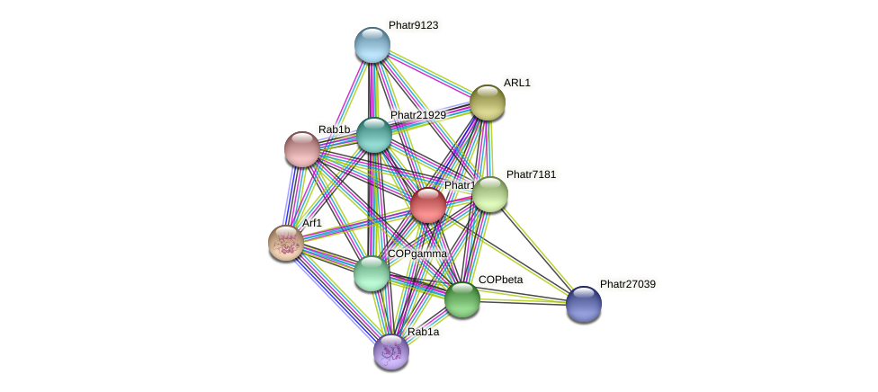 Phatr15422 protein (Phaeodactylum tricornutum) - STRING interaction network