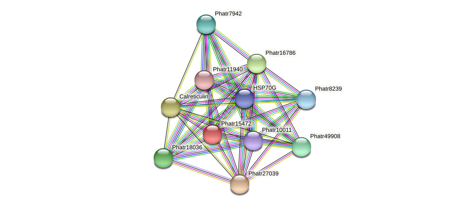 Phatr15472 protein (Phaeodactylum tricornutum) - STRING interaction network
