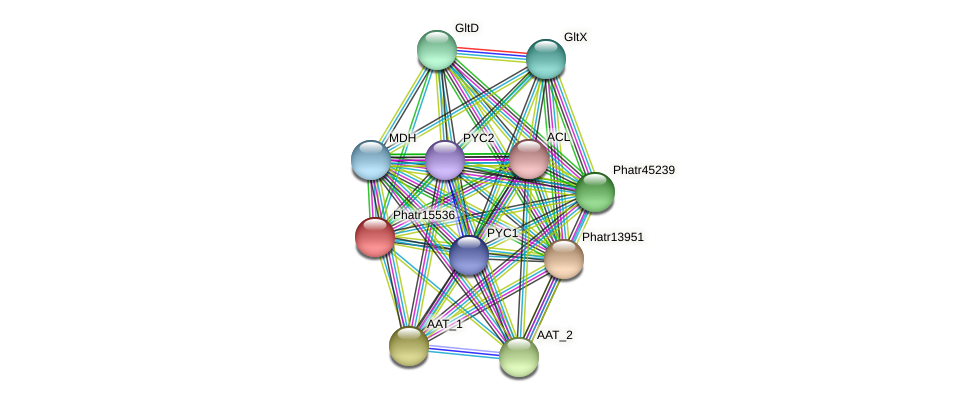 Phatr15536 protein (Phaeodactylum tricornutum) - STRING interaction network