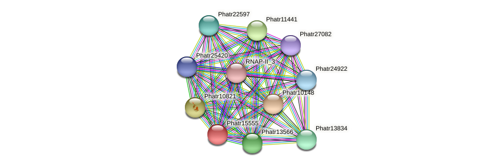 Phatr15555 protein (Phaeodactylum tricornutum) - STRING interaction network