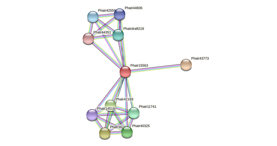 Phatr15563 protein (Phaeodactylum tricornutum) - STRING interaction network