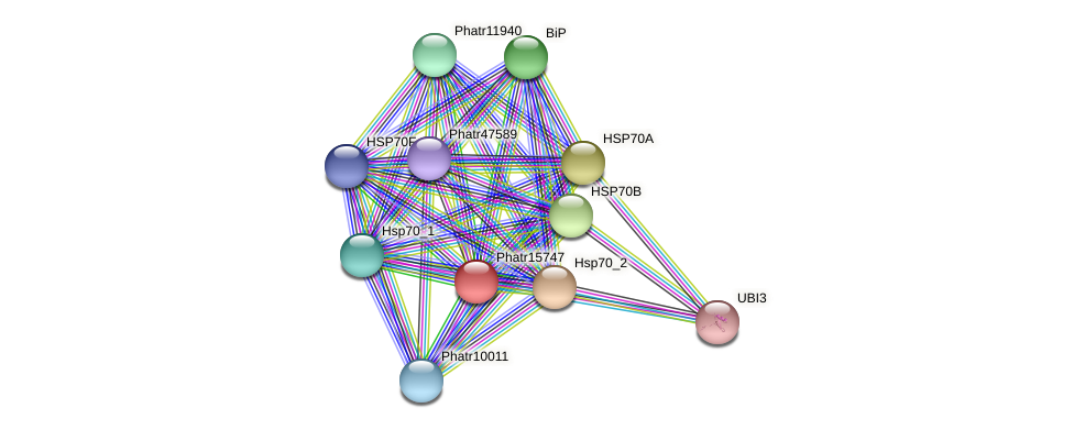 Phatr15747 protein (Phaeodactylum tricornutum) - STRING interaction network