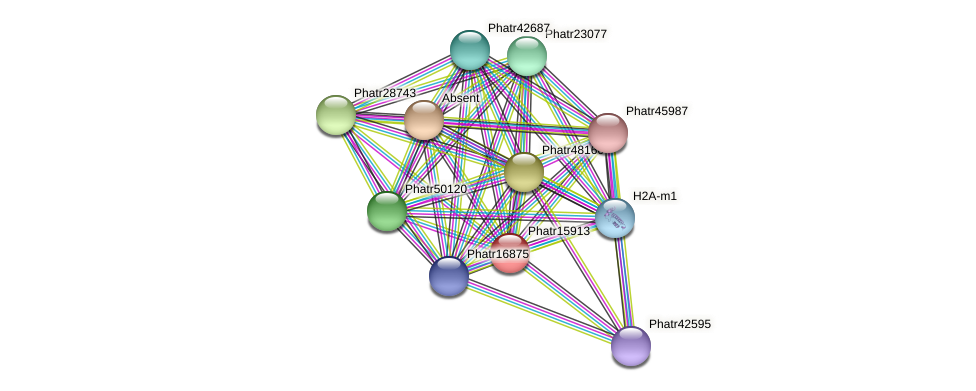 Phatr15913 protein (Phaeodactylum tricornutum) - STRING interaction network