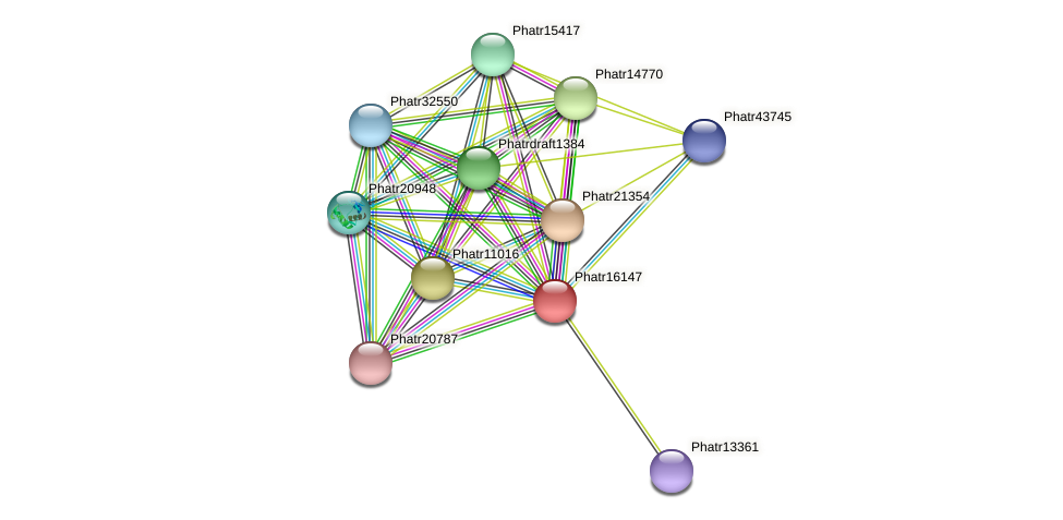 Phatr16147 protein (Phaeodactylum tricornutum) - STRING interaction network