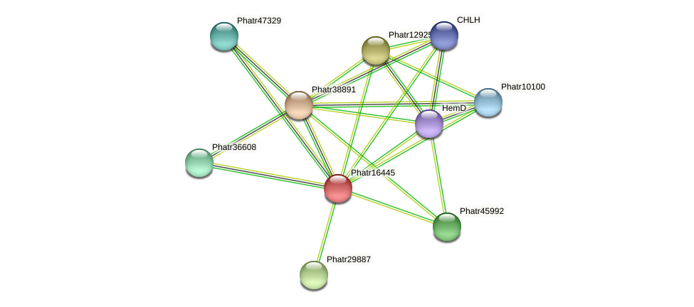 Phatr16445 protein (Phaeodactylum tricornutum) - STRING interaction network