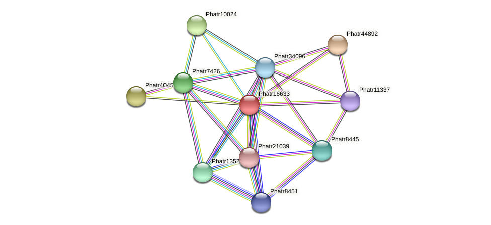 Phatr16633 protein (Phaeodactylum tricornutum) - STRING interaction network