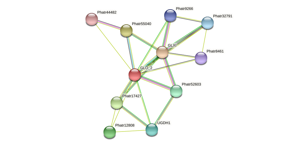 GLO_2 protein (Phaeodactylum tricornutum) - STRING interaction network