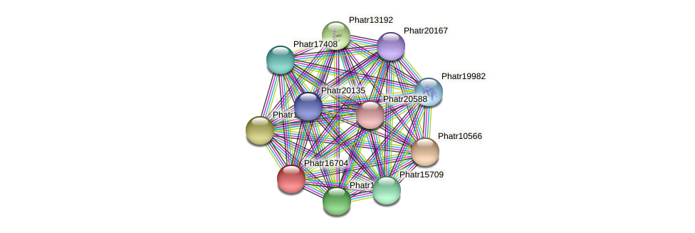 Phatr16704 protein (Phaeodactylum tricornutum) - STRING interaction network