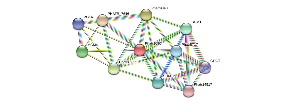 Phatr1690 protein (Phaeodactylum tricornutum) - STRING interaction network