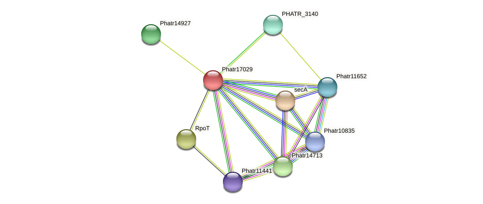 Phatr17029 protein (Phaeodactylum tricornutum) - STRING interaction network