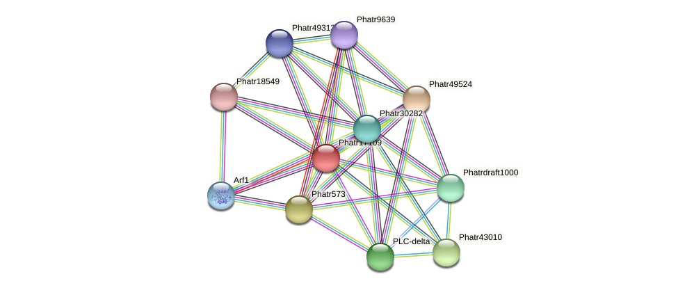 Phatr17109 protein (Phaeodactylum tricornutum) - STRING interaction network
